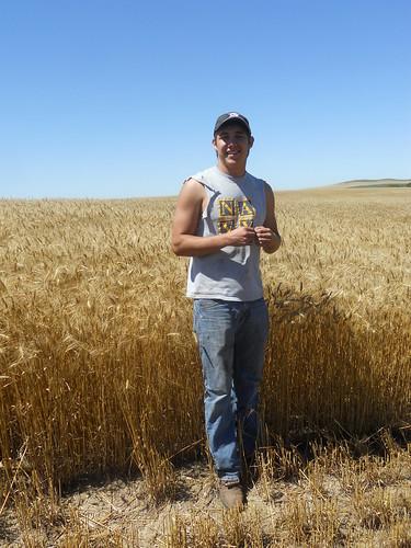 Jose in tall wheat