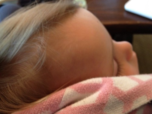 asleep in my lap - mid-morning
