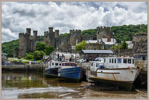 Conwy Castle (Explore)