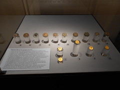 Some Roman coins