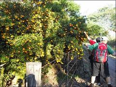 324ª Trilha Garganta do Diabo e trilha das Jaboticabas - Santa Maria RS_031