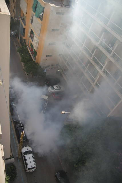 crazy mosquito killing truck