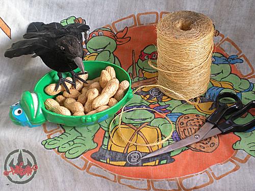 Teenage Mutant Ninja Turtles Turtle Tips Bird