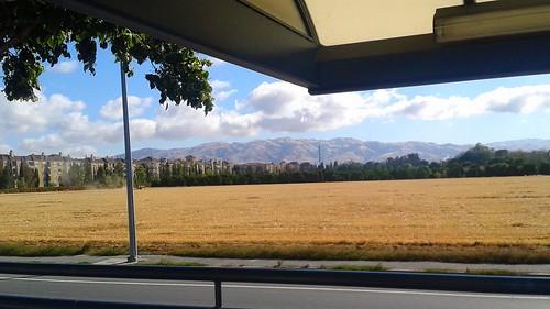 Downtown San Jose Hay Bailing by tadnkat