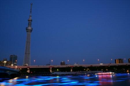 東京ホタル 2012