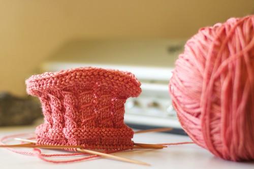 Rubus suberectus sock: cuff