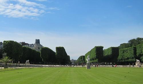 Pleached trees - Jardin du Luxembourg