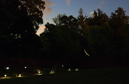 Lightning bug trail by aimeesblog