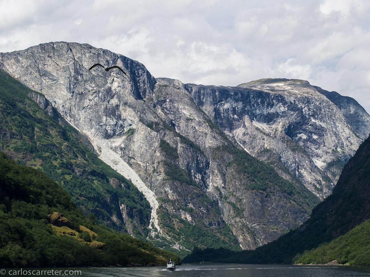 Navegando por el Nærøyfjord