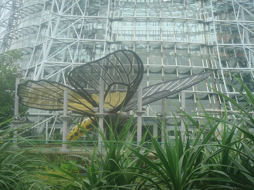 台中植物園16