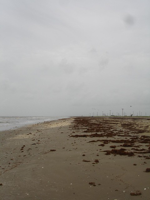 Holly Beach in 2006