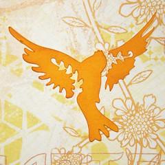 3 - Bird Detail