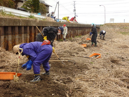 南相馬市鹿島区で瓦礫片付けボランティア Volunteer at Minamisoma (Fukushima pref.), Damaged by the Tsunami of Japan Earthquake and Fukushima Daiichi nuclear plant accident
