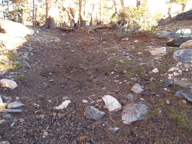 Leave No Trace! You'd never know that we pitched our tent on this spot at Trail Fork Springs Camp...
