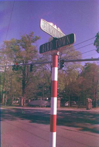 Funny Cide Bird Town 3 KDR LR