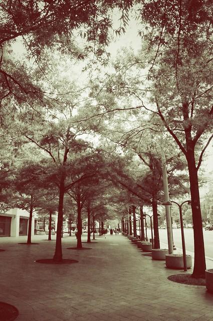 J. Edgar's Treets