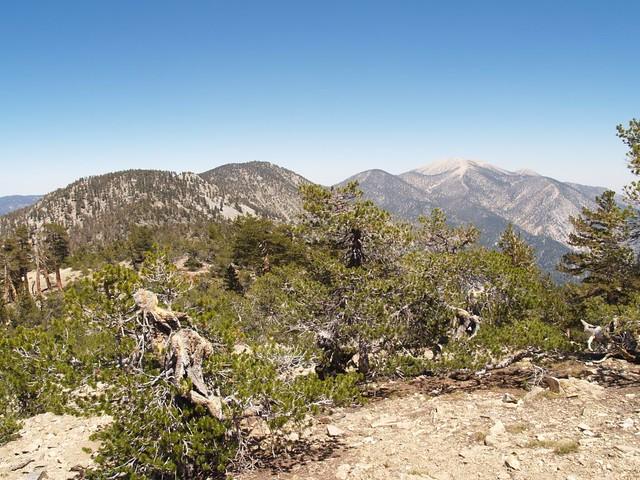 View back toward San Gorgonio from San Bernardino Peak