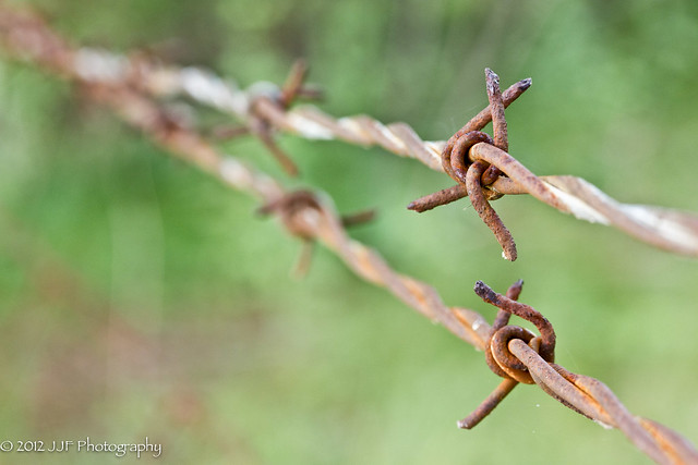 2012_Aug_03_Barb Wire_011