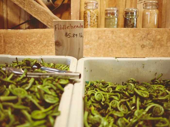 Beth's Farm Market Fiddleheads