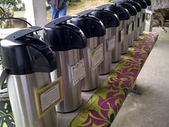 South Kona coffee tasting Greenwell Farms