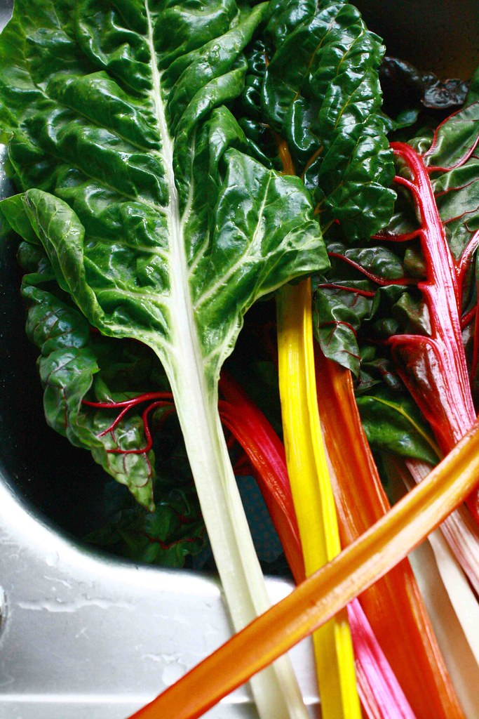 swiss chard colourful stems