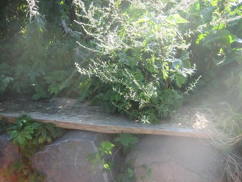 The icecream bench