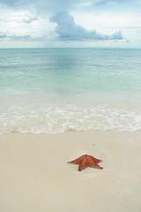 愛の海を前にして佇んで…