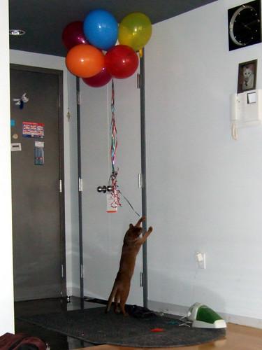 gunhee-balloons631