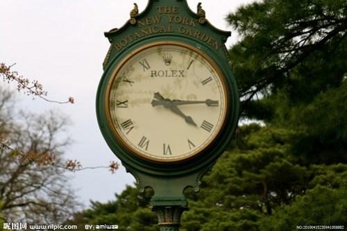 rolex classic watch image