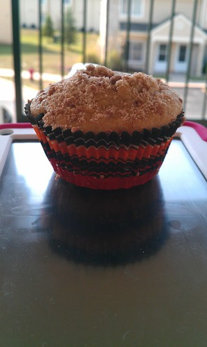 241/366 [2012] - Muffin by TM2TS