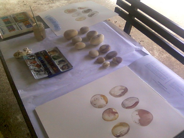 Stones watercolour workshop