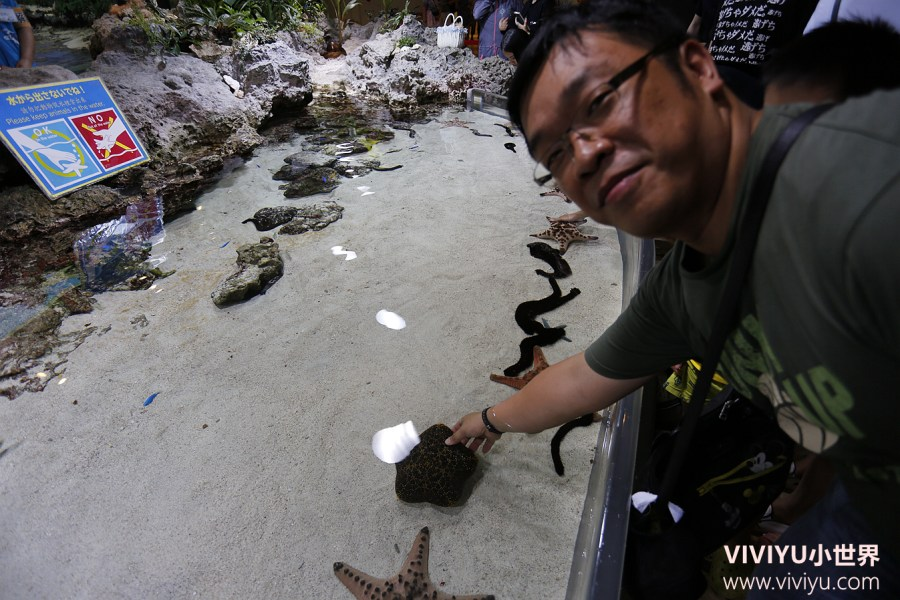 日本,日本沖繩,水族館,沖繩,沖繩美麗海水族館,沖繩親子遊 @VIVIYU小世界