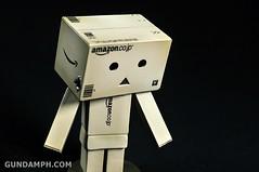 Revoltech Danboard Mini Amazon Box Version Review & Unboxing (43)