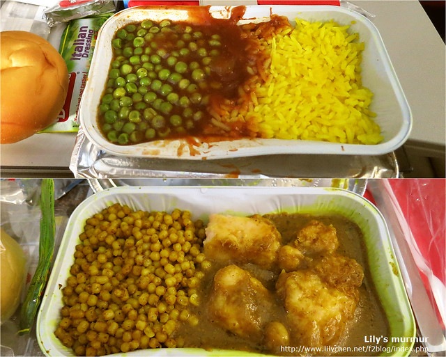 這是飛往維也納的飛機餐,非常的中東口味,好吃。但吃了好幾餐下來有點難以消化就是。
