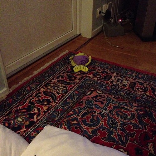 Hedvig found a toy and left it out
