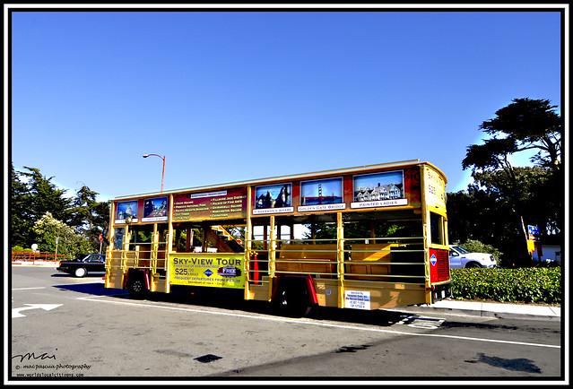 Copy San Fo City Tour 499