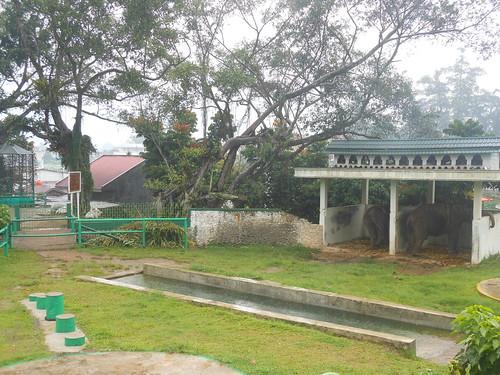 Kebun Binatang Fort De Kock