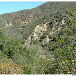 Cleveland National Forest: San Mateo Canyon