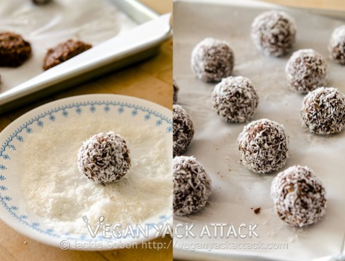 Delicious and easy to make, no-bake, Cocoa-nut Quinoa Bites! Make these ahead of a trip, hike, or workouts to have these healthy snacks on hand.