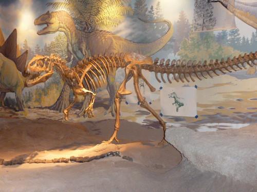 9-3-12 UT - Dinosaur National Monument 6