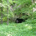 Cave at Falls Creek