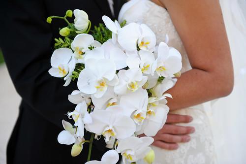 Wedding 2008