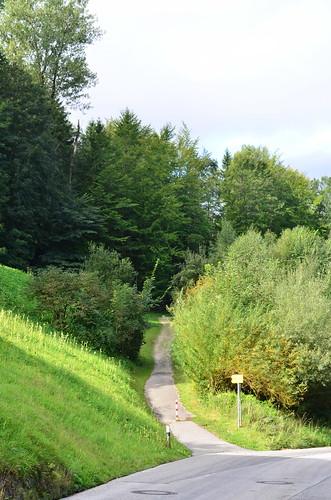 driveway to Berghof