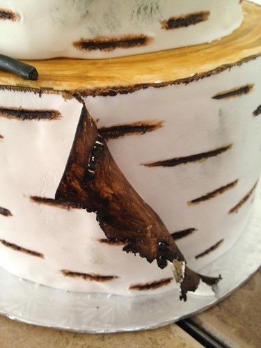 Birch Stump Wedding Cake (6/6)