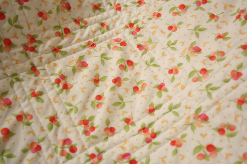 S's Quilt Back