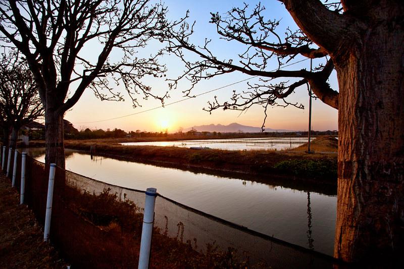 Morning in Jepara