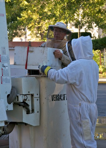 Mark and Val unload the bees