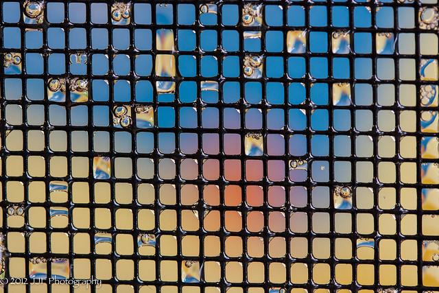 2012_Oct_19_Screen Macro-22
