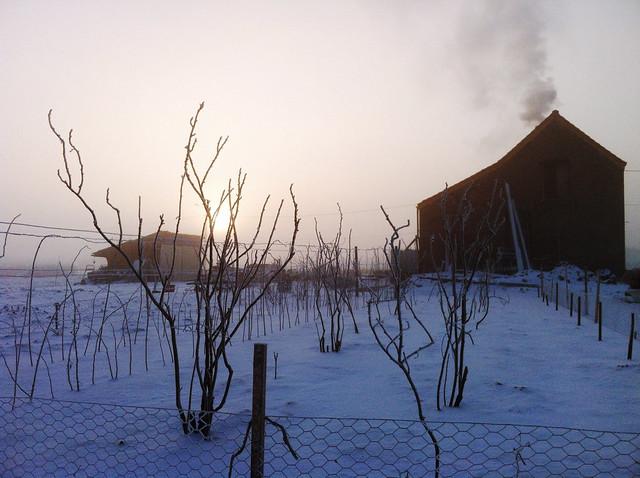 Tournichette des neiges
