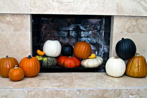 Decorative Gourd Season!!